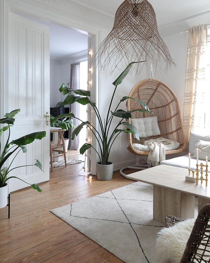 Pflanzen • Bilder  Ideen • Couch von Pflanzen Ideen Wohnzimmer Photo