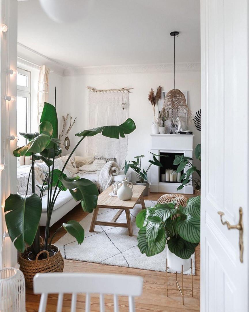 Pflanzen • Bilder  Ideen • Couch von Wohnzimmer Pflanzen Ideen Bild