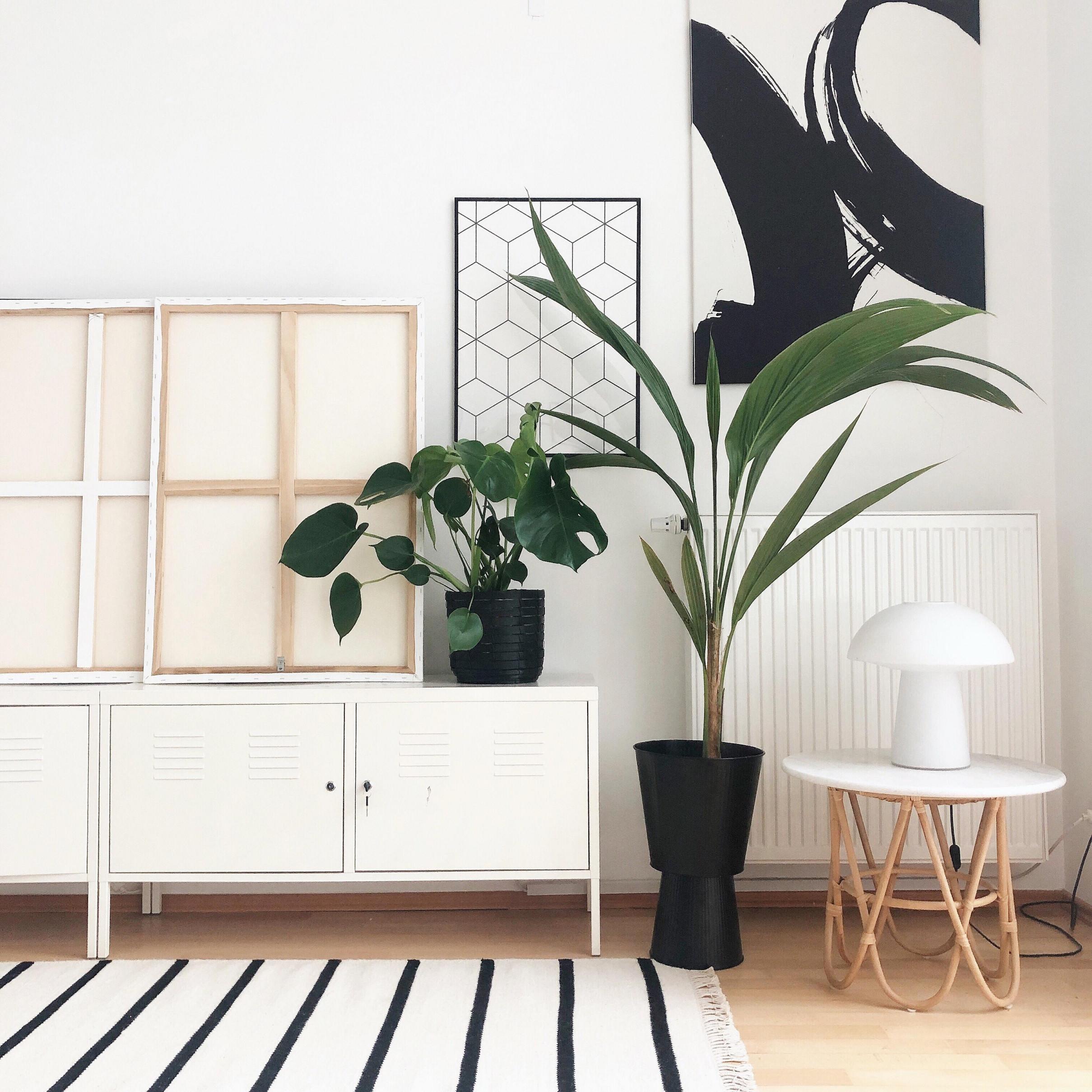 Pflanzendeko • Bilder  Ideen • Couch von Pflanzen Deko Wohnzimmer Bild