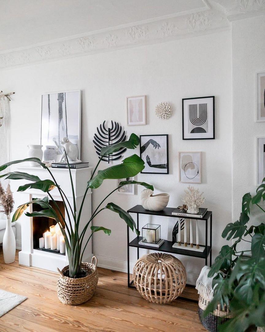 Pflanzenliebe • Bilder  Ideen • Couch von Pflanzen Wohnzimmer Ideen Photo