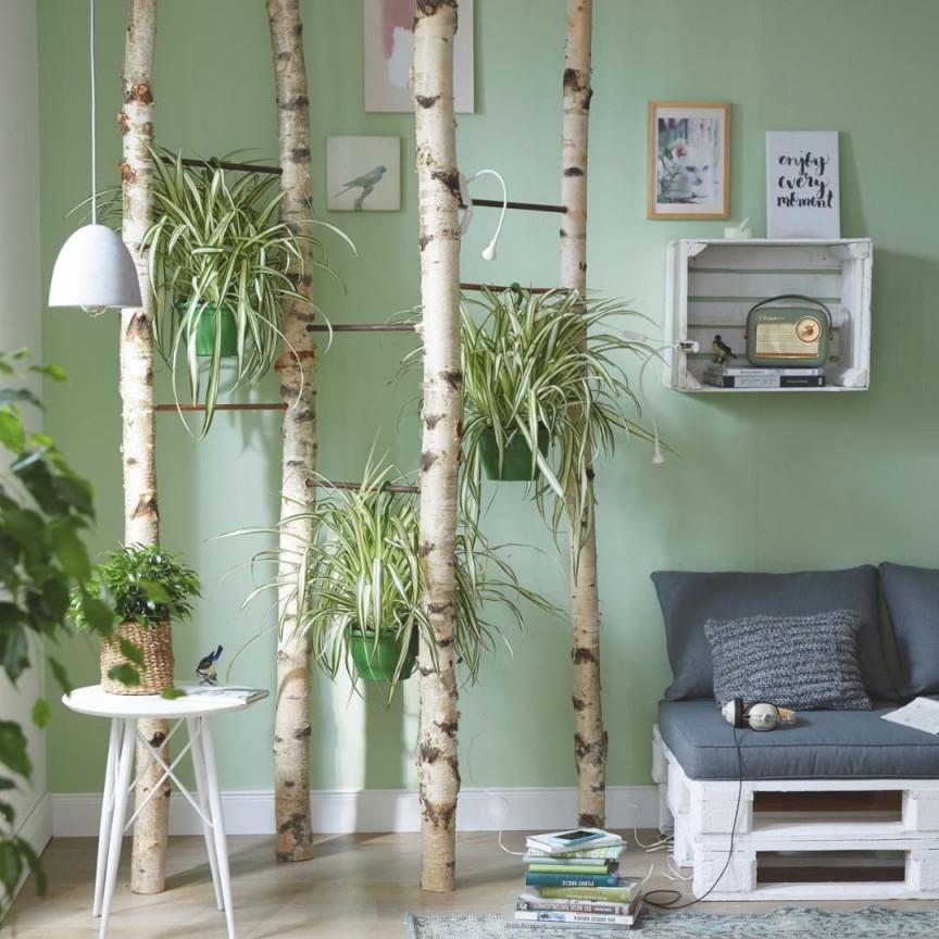 Pin Von Claudik Auf Birken Deko In 2020  Wohnzimmer von Deko Pflanzen Wohnzimmer Bild