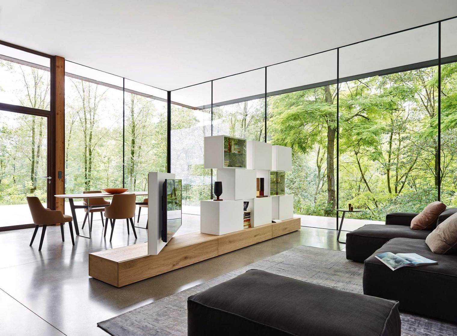 Tv Wohnwand Als Raumteiler  Wohnen Moderne Raumteiler Tv von Raumtrenner Ideen Wohnzimmer Bild