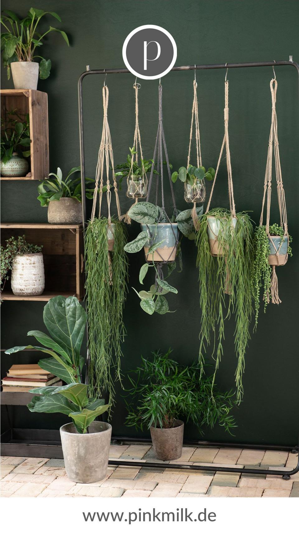 Urban Jungle Ist Der Neuste Dekorationstrend Für Dein von Deko Pflanzen Wohnzimmer Photo