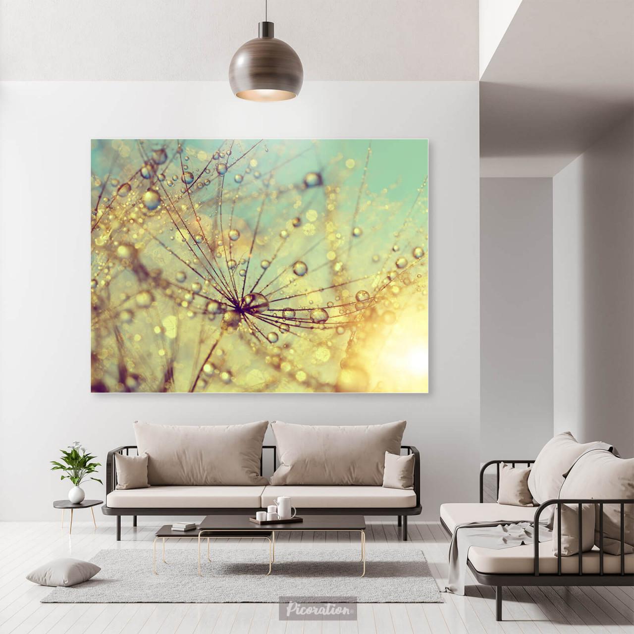 Wandbild Pusteblume Mit Wassertropfen Ab 100 X 75 Cm von Bilder Querformat Wohnzimmer Photo