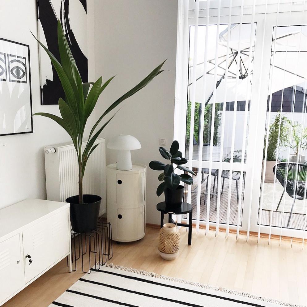 Wohnen Mit Pflanzen  Wohnen Wohnzimmer Einrichten von Wohnzimmer Pflanzen Deko Photo