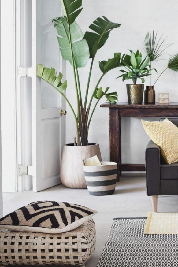 Wohnzimmer Dekoration Pflanzen Wohnzimmer Ideen von Pflanzen Ideen Wohnzimmer Bild