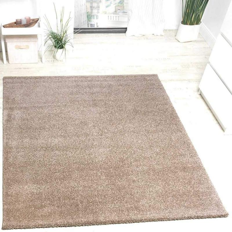 Wohnzimmer Teppich 200×300 Frisch Teppich Beige Braun Fein von Wohnzimmer Teppich 200X300 Bild