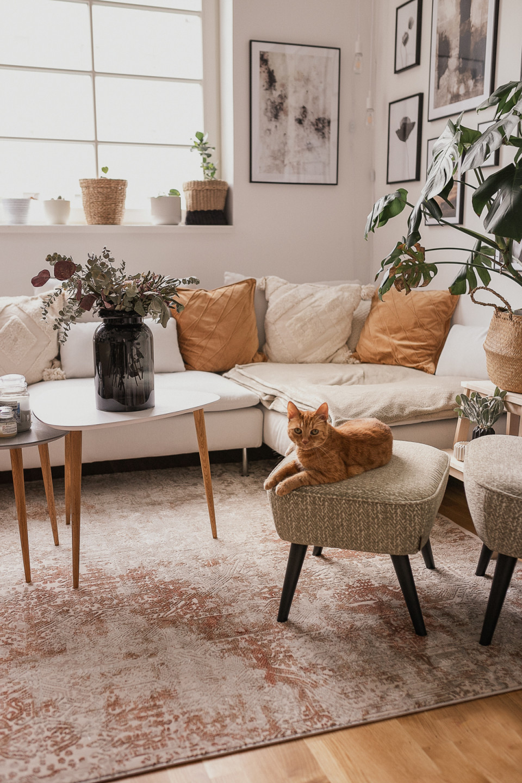 Wohnzimmer Update So Habe Ich Den Richtigen Vintageteppich von Wohnzimmer Teppich Vintage Bild