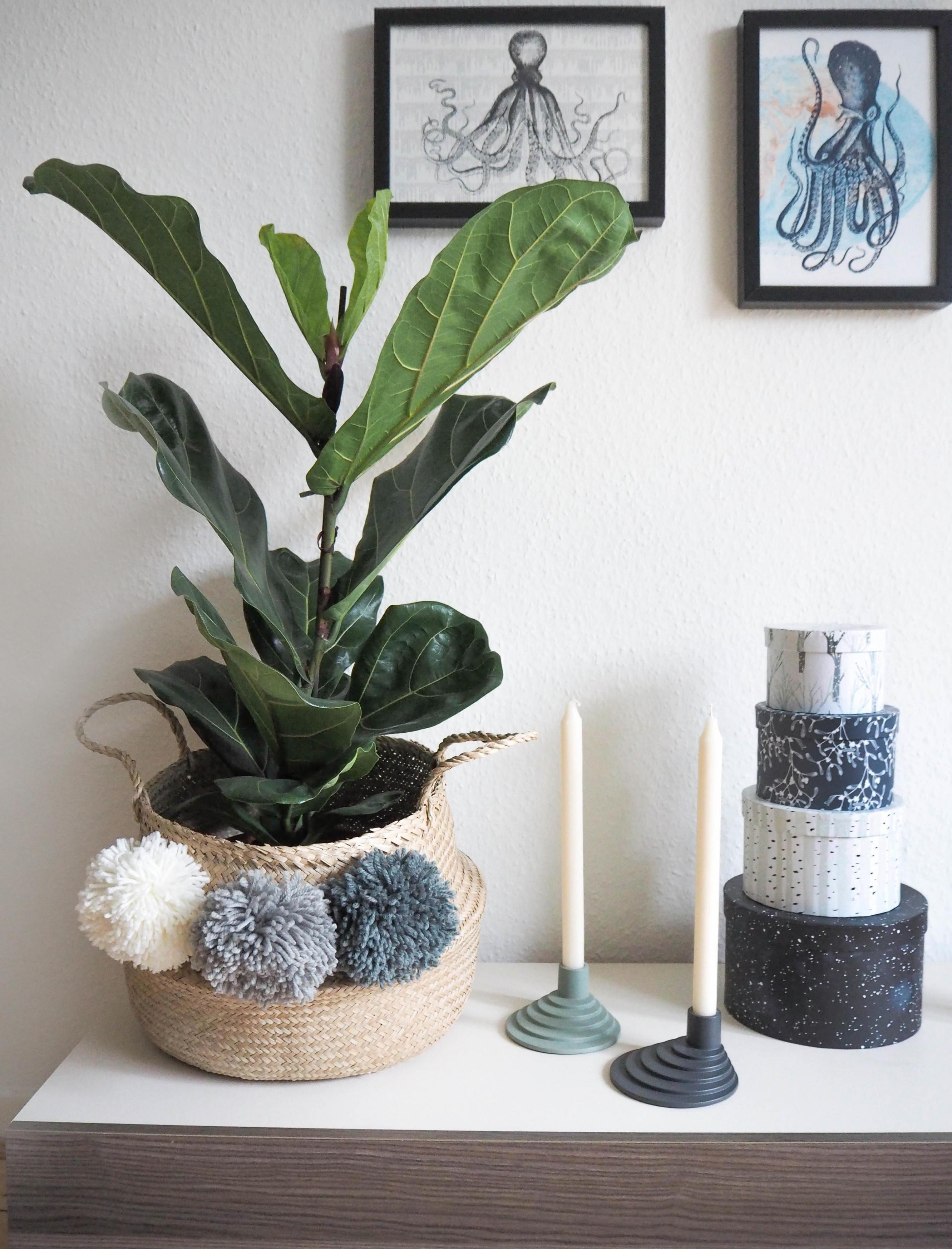 Wohnzimmerdekoideen Mach Es Dir Gemütlich von Pflanzen Deko Wohnzimmer Photo