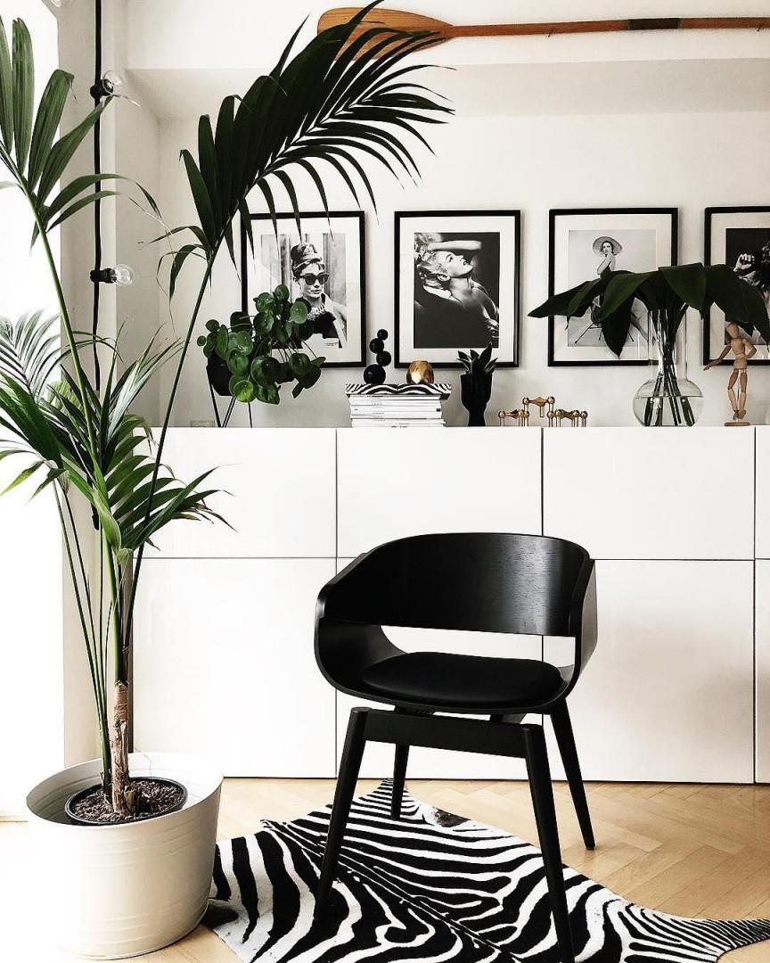 Wunderschöne Bilder Goldige Akzente Pflanzen Elegante von Deko Objekte Wohnzimmer Photo